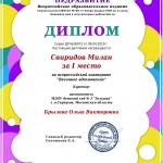 Диплом победителя Всероссийского конкурса.